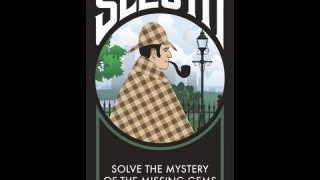 Sleuth Review